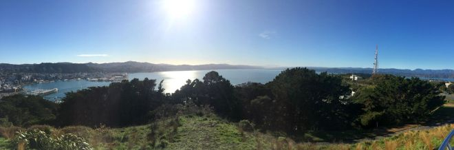 Lambton Harbour and Oriental Bay as seen from the summit of Mount Victoria (pic by me).